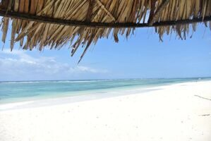 diani-reef-beach-resort-i-spa.jpg